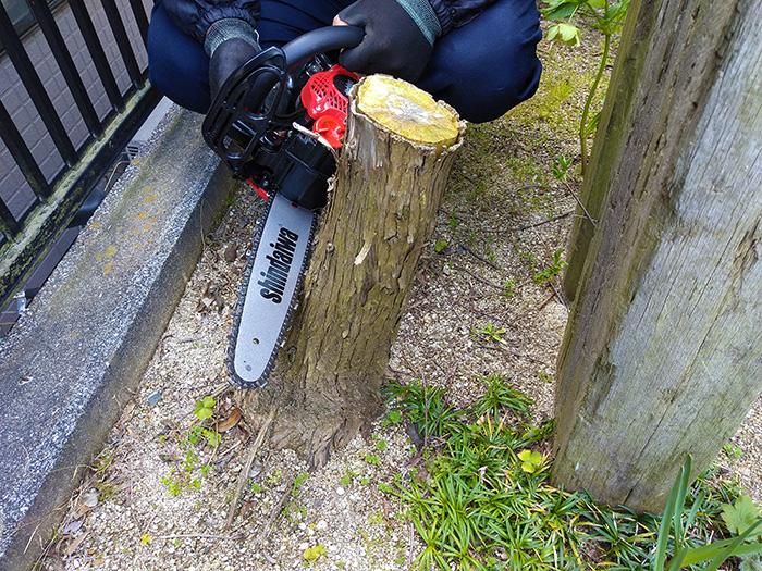 樹木の伐採・枝打ち