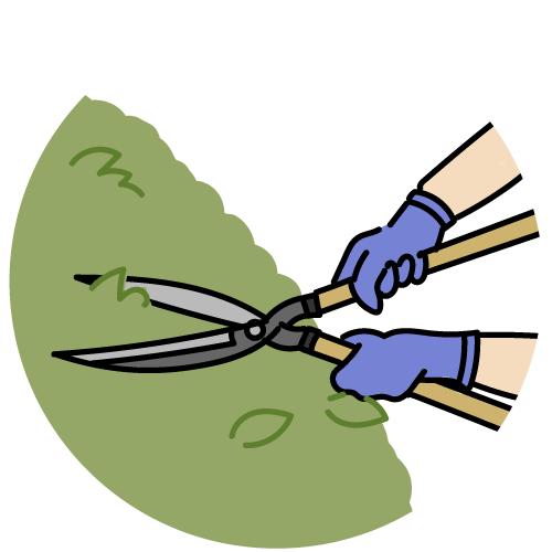 植木の剪定作業のイラスト