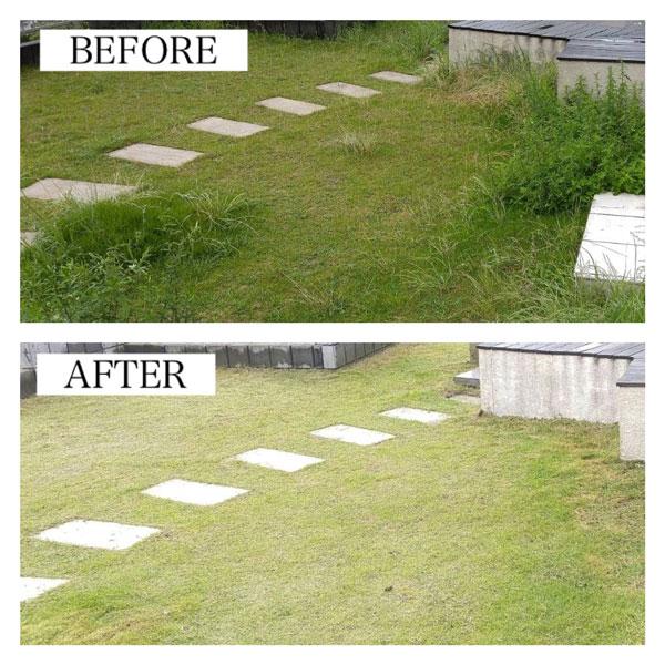 芝刈りビフォーアフターの写真